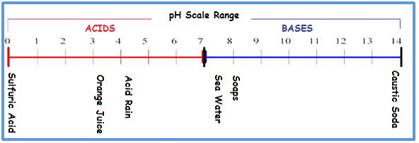 pH Scale Range